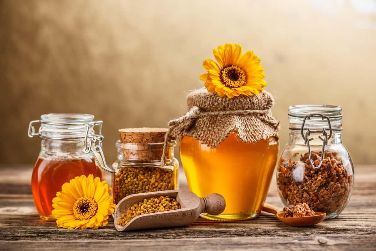 فوائد العسل مع الماء للصحة والجسم