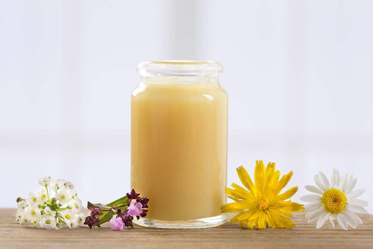 فوائد غذاء ملكات النحل واضراره على صحه الانسان