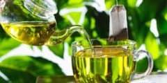 هل الشاي الاخضر مضر للحامل أو مفيد ؟