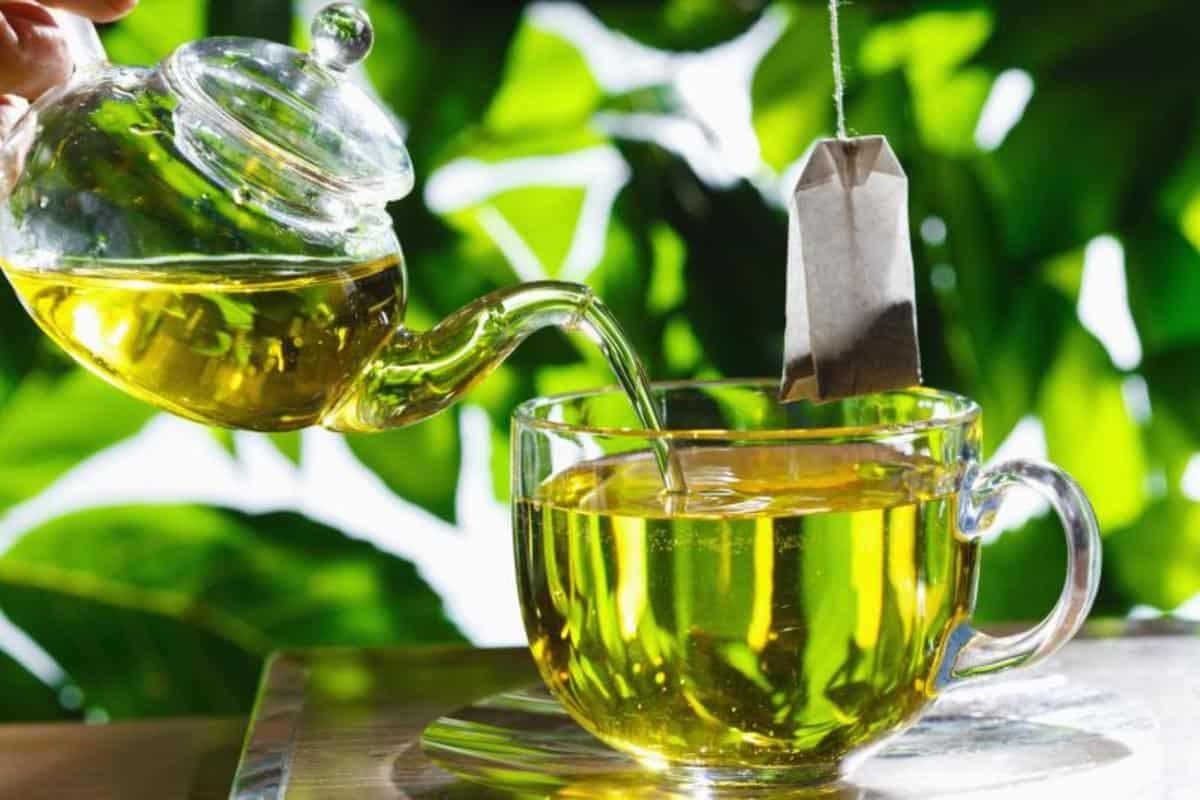 الشاي الاخضر مضر للحامل