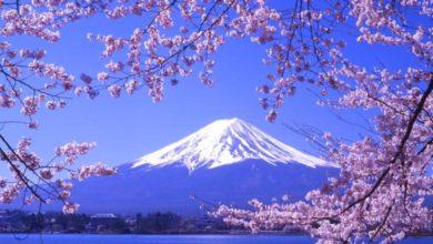 اين يوجد جبل فوجي